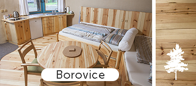 06_Borovice